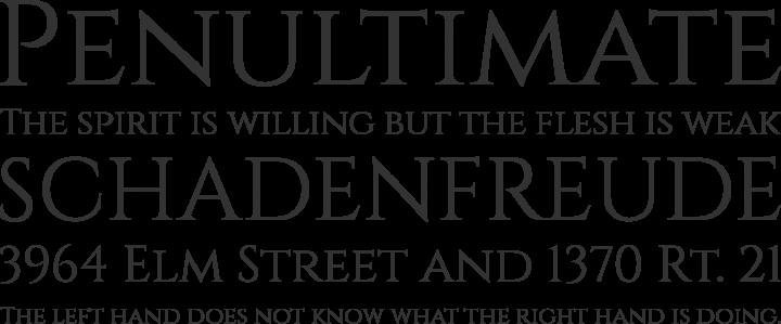 Cinzel Font Phrases