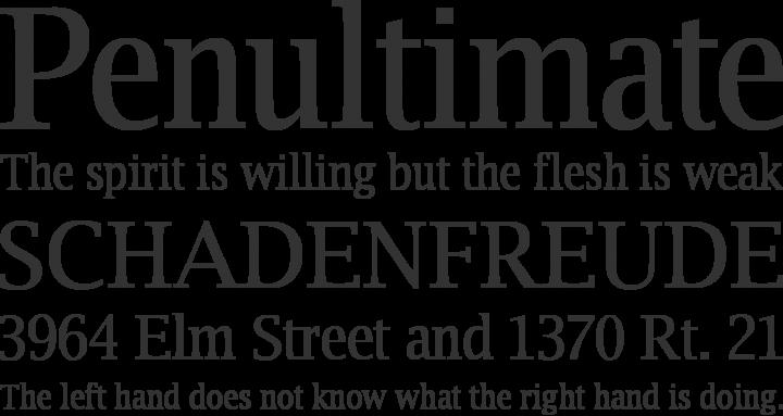 Luxi Serif Font Phrases