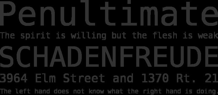 Bitstream Vera Sans Mono Font Phrases