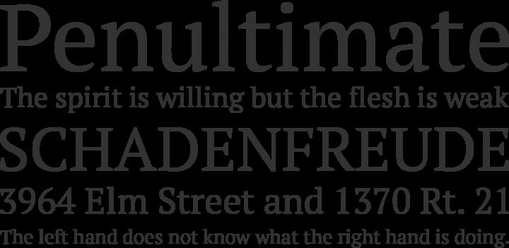 PT Serif Font Phrases