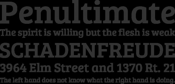 Bree Serif Font Phrases