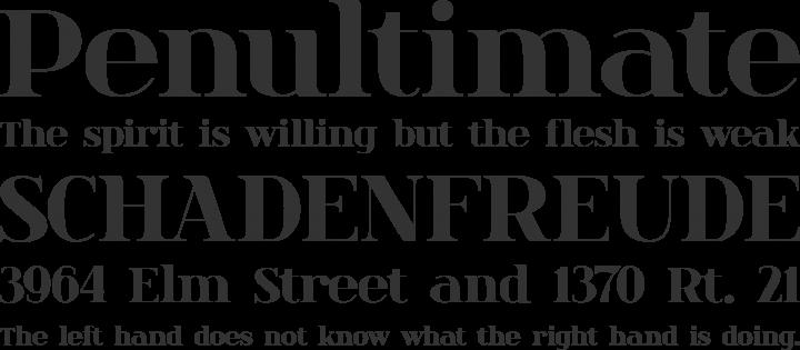 spinwerad Font Phrases