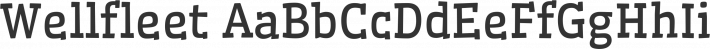 Wellfleet font family by Sorkin Type Co
