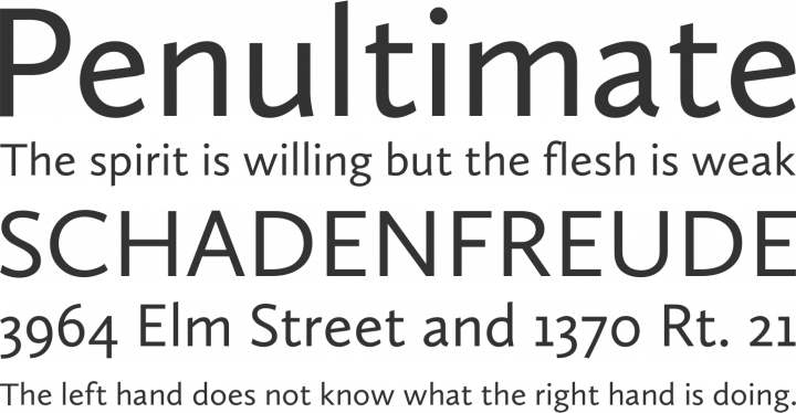 Calluna Sans Font Phrases