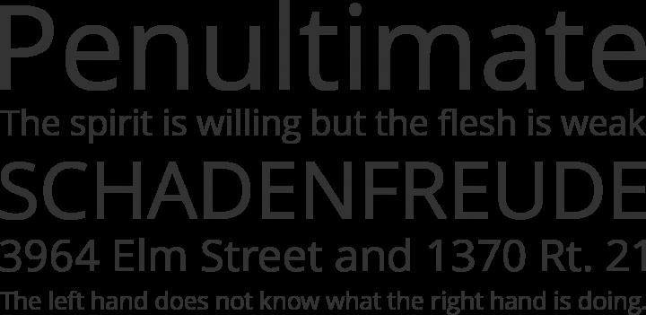 open typeface
