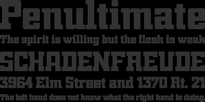 Trump Font Trump Town Pro Font Phrases