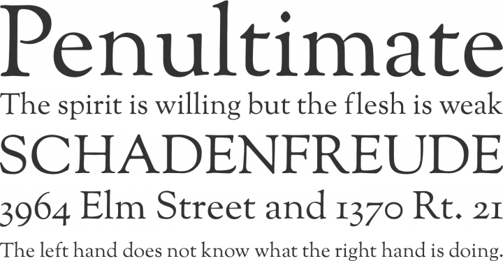 Sorts Mill Goudy Font Phrases