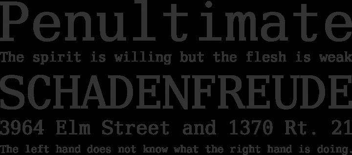 Verily Serif Mono Font Phrases