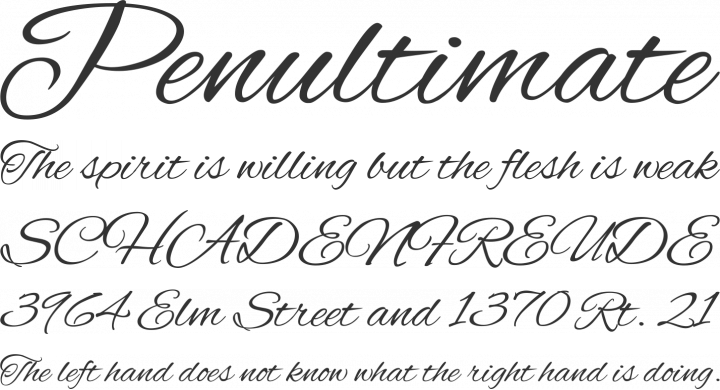 Alex brush font free by typesetit squirrel