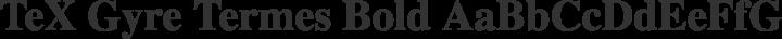 TeX Gyre Termes Bold free font