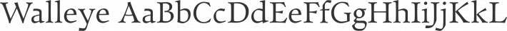 Walleye font family by Looseleaf Fonts