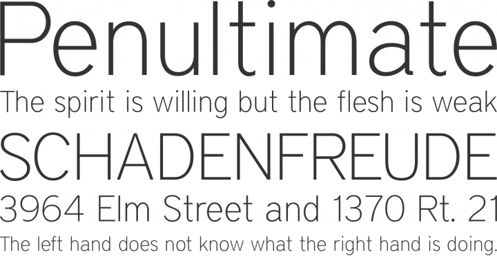 District Thin Font Phrases