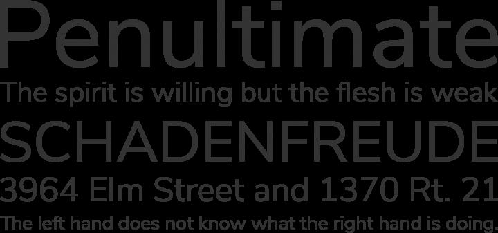 Nunito Sans Font Phrases